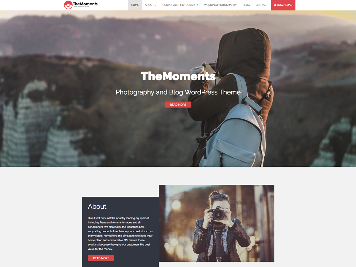 TheMoments Preview Wordpress Theme - Rating, Reviews, Preview, Demo & Download