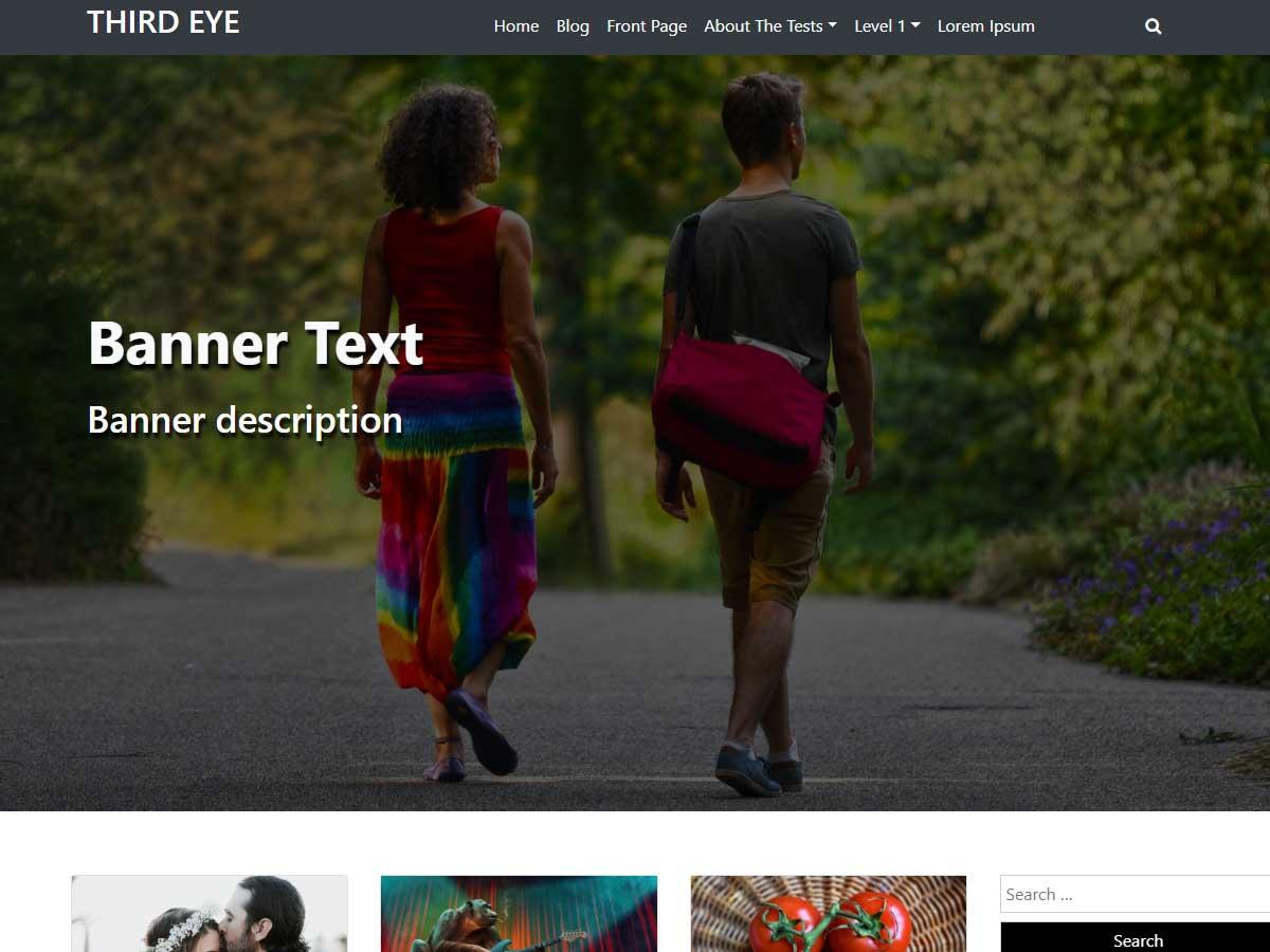 Third Eye Preview Wordpress Theme - Rating, Reviews, Preview, Demo & Download