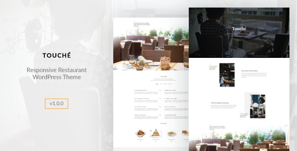 Touche Preview Wordpress Theme - Rating, Reviews, Preview, Demo & Download