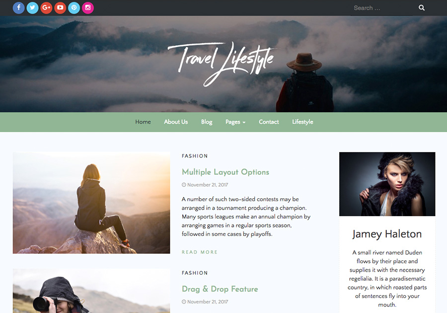 Travel Lifestyle Preview Wordpress Theme - Rating, Reviews, Preview, Demo & Download