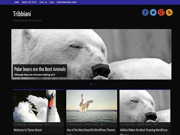 Tribbiani Preview Wordpress Theme - Rating, Reviews, Preview, Demo & Download