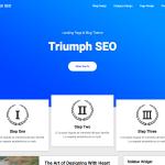 Triumph Seo
