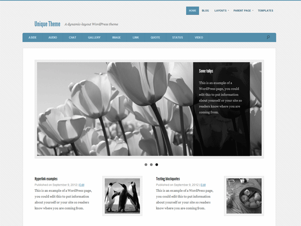 Unique Preview Wordpress Theme - Rating, Reviews, Preview, Demo & Download
