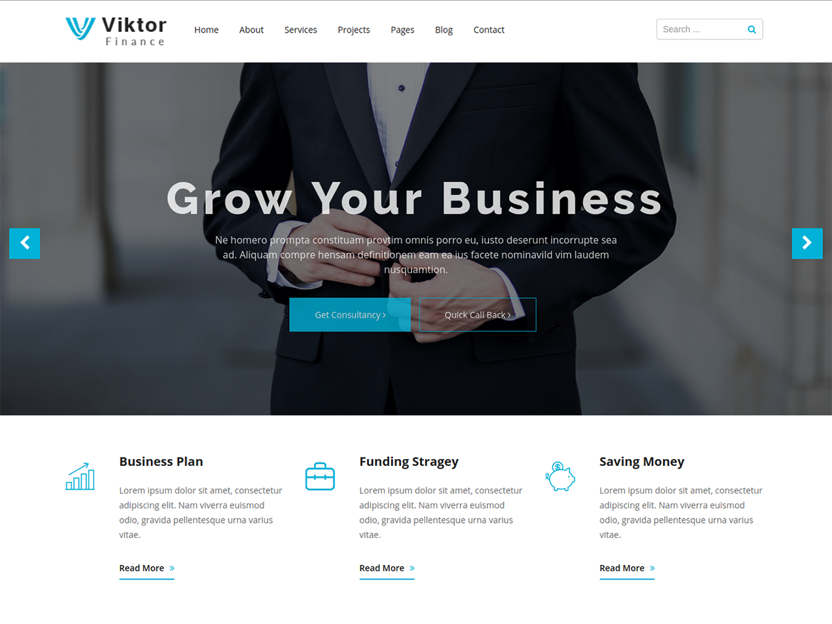 Viktor Lite Preview Wordpress Theme - Rating, Reviews, Preview, Demo & Download