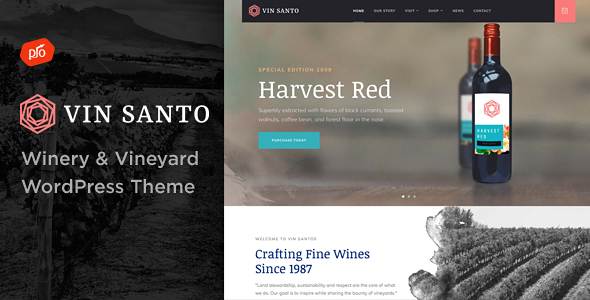 Vin Santo Preview Wordpress Theme - Rating, Reviews, Preview, Demo & Download