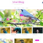 Viral Blog