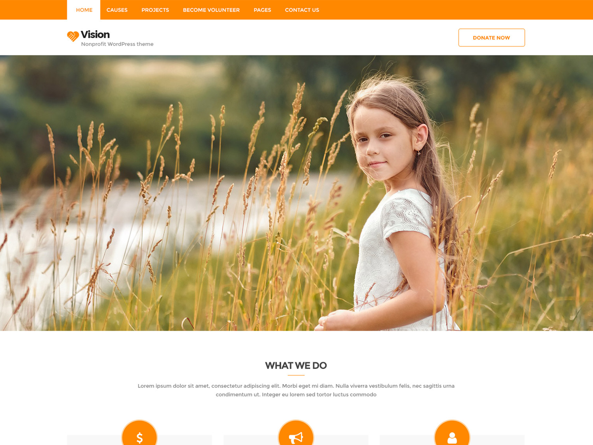 Vision Lite Preview Wordpress Theme - Rating, Reviews, Preview, Demo & Download