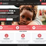 VW Charity