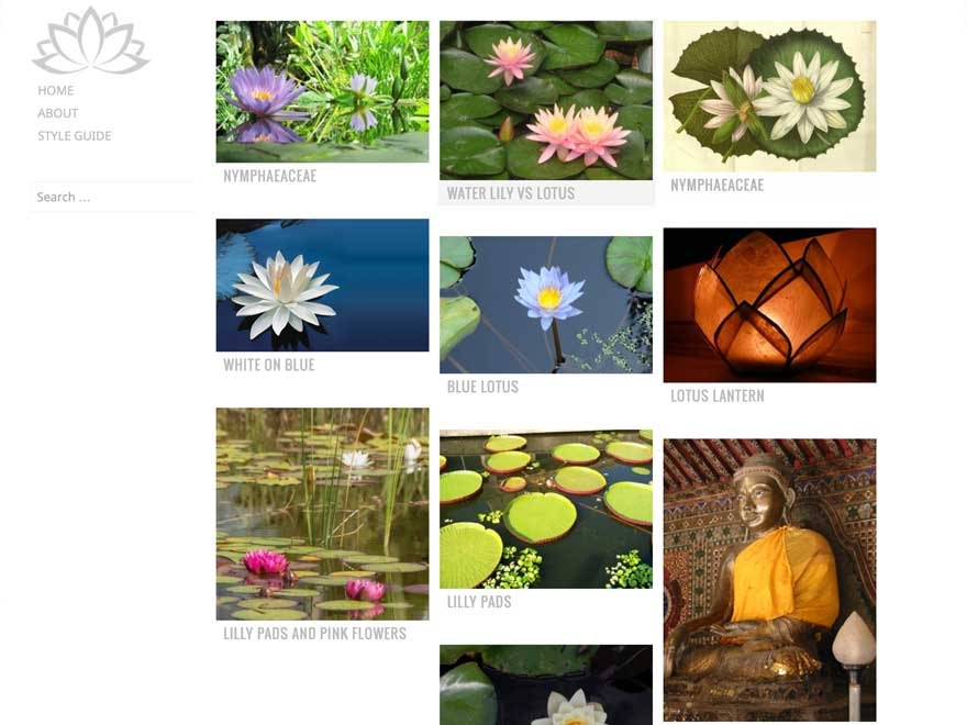 Water Lily Preview Wordpress Theme - Rating, Reviews, Preview, Demo & Download