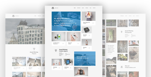 Woodbury Preview Wordpress Theme - Rating, Reviews, Preview, Demo & Download