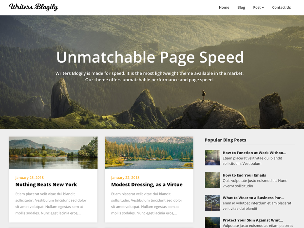 Writers Blogily Preview Wordpress Theme - Rating, Reviews, Preview, Demo & Download