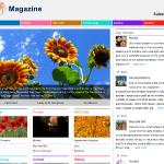 Xin Magazine