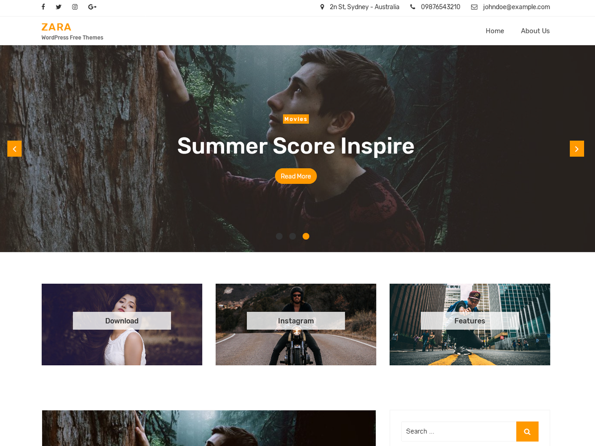 Zara Preview Wordpress Theme - Rating, Reviews, Preview, Demo & Download