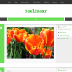 ZeeLinear
