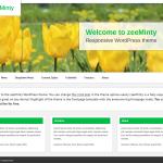 ZeeMinty