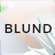 Blund Minimal